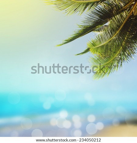 Tropical beach background with palm and blue sea