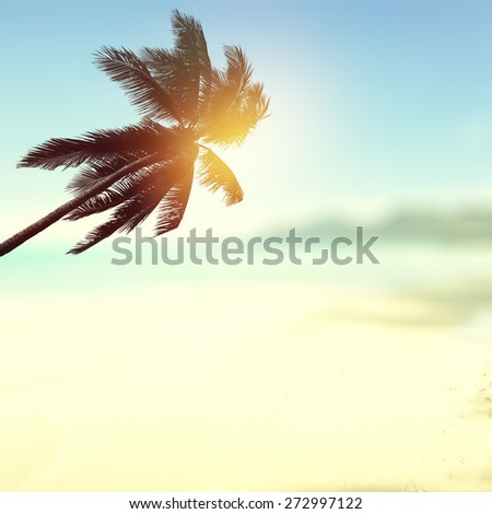 Tropical beach background with palm tree and ocean. Vintage effect.