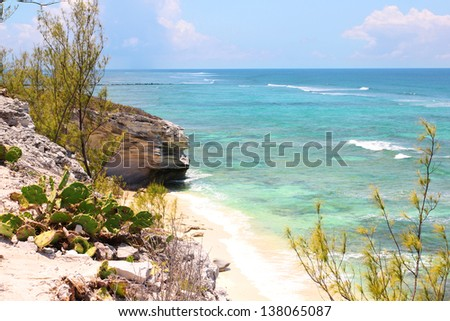 tropical beach. beautiful rocky shore with turquoise ocean and cactus. Grand Turk island, The Bahamas