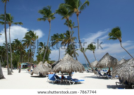 Tropical beach huts