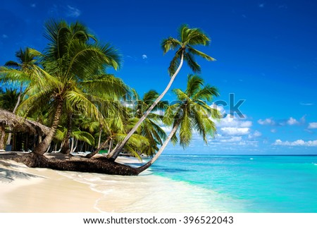 Tropical beach in caribbean sea, Saona island, Dominican Republic