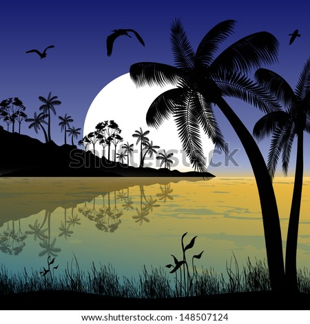 Tropical beach in evening landscape background