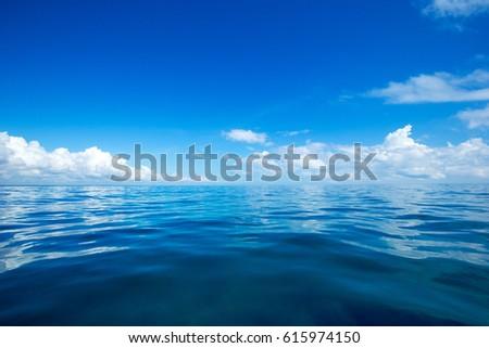 tropical beach in Sri Lanka #615974150