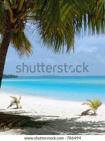 Tropical Beach in the Cook Islands