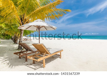 Tropical beach nature as summer landscape with lounge chairs and palm trees and calm sea for beach banner. Luxurious travel landscape, beautiful destination for vacation or holiday. Beach scene #1431567239