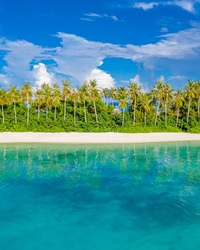 Tropical beach nature landscape under sunlight. Stunning natural environment, tropical patter, water reflection. Amazing nature exotic vacation, holiday concept as travel and tourism background banner