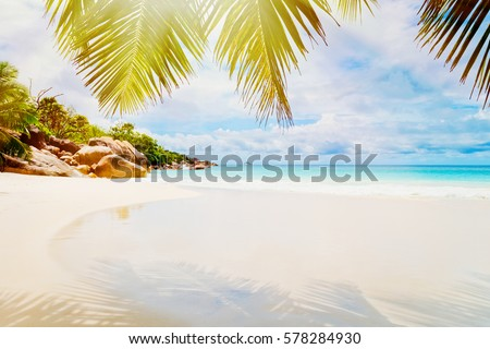 Tropical beach on the sunny day