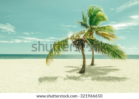 tropical beach palm of juan...