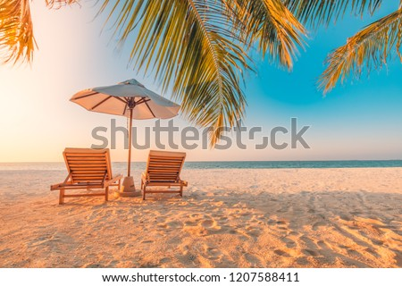 Tropical beach resort hotel background  as summer landscape with lounge chairs and palm trees in sun rays and calm sea for beach banner. Luxury vacation and holiday destination concept #1207588411