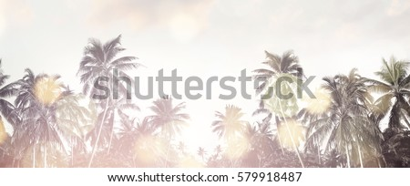 Tropical beach summer background with palm trees silhouette at sunset. Coconut palm trees at tropical coast with vintage effect. Bokeh effect. Panorama #579918487