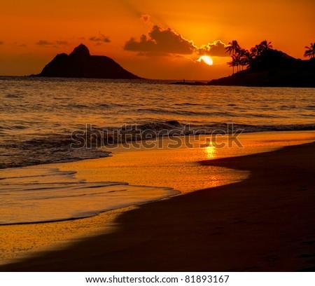 Tropical Beach Sunrise - Kailua Beach, Oahu Hawaii