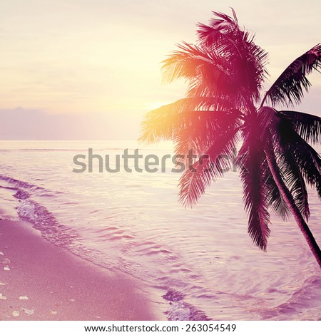 Tropical beach sunset background with palm tree silhouette. Vintage effect.