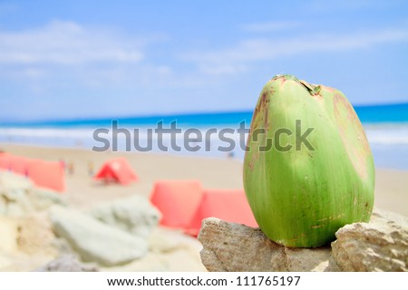 Tropical Beach with coconut