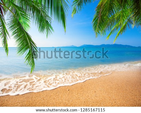 tropical beach with coconut palm #1285167115