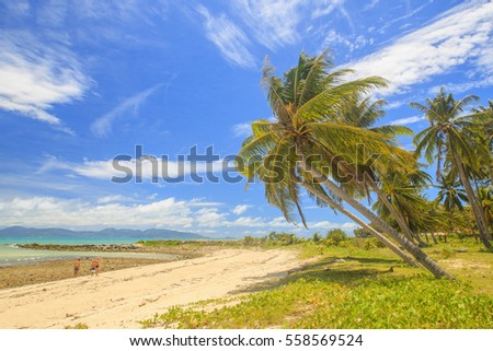 Tropical beach with coconut palm tree at Koh Samui, Thailand. #558569524