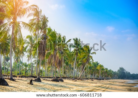 Tropical beach with coconut palm trees #606811718