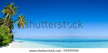 Tropical Beach with Coconut Palm Trees, panoramic view with much copy space - stock photo