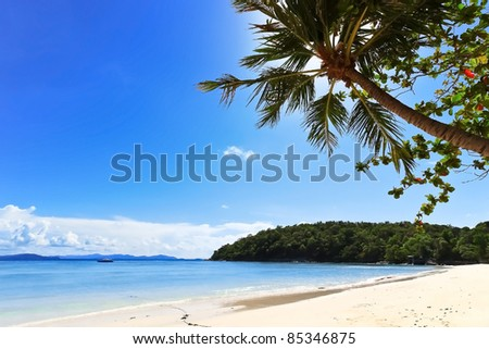 Tropical beach with coconut palm with blue ocean and blue sky
