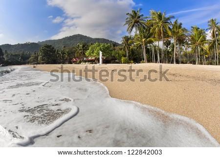 Tropical beach with coconut palms on Koh Phangan island, Thailand