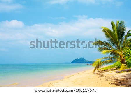 tropical beach with palm, Andaman Sea, Thailand