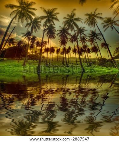 Tropical beach with palm tree, Caribbean