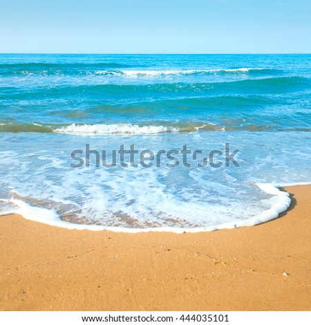 Tropical beach with sand and sea wave at background #444035101