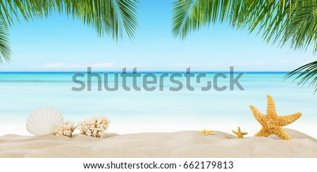 Tropical beach with sea star on sand, summer holiday background. Travel and beach vacation, free space for text.