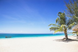 Tropical beach with white send, palm tree and beautiful sky
