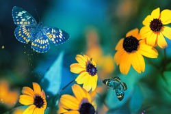 Tropical butterflies and yellow bright summer flowers on a background of colorful  foliage in a fairy garden. Macro artistic image.