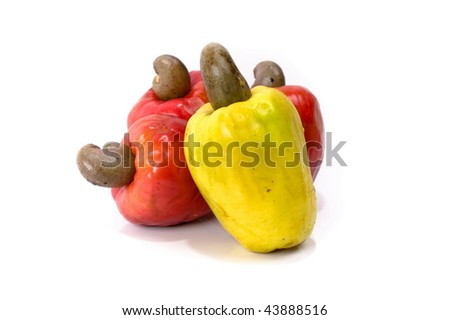 Tropical Cashew Fruit on white background .