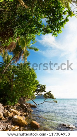 Tropical coast vertical panorama