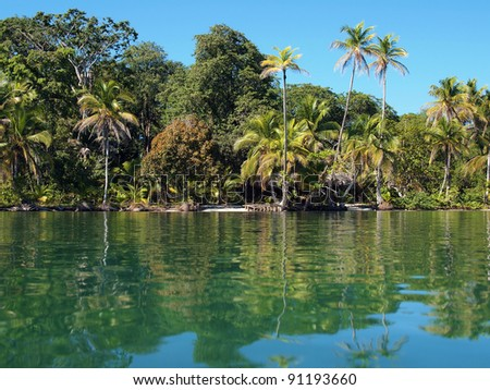 Tropical coast with lush vegetation reflected on water surface of the Caribbean sea, Panama