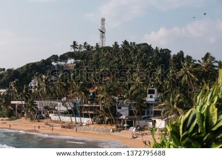 tropical coastline of coconut trees and beach #1372795688