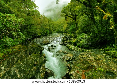 tropical creek, flowing with glacier water