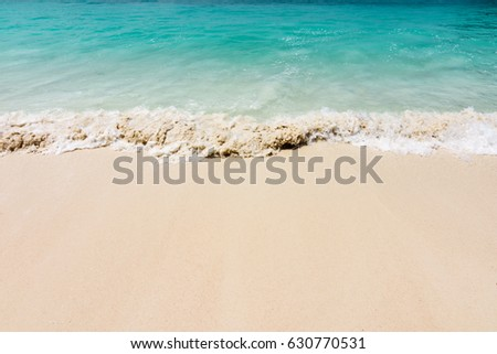 Tropical flat sand beach and vivid blue sea  #630770531