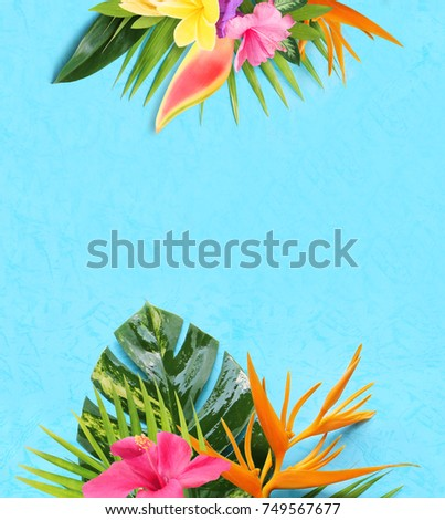 tropical flowers on a blue background #749567677