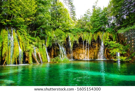 Tropical forest waterfall pool view. Waterfall in deep forest