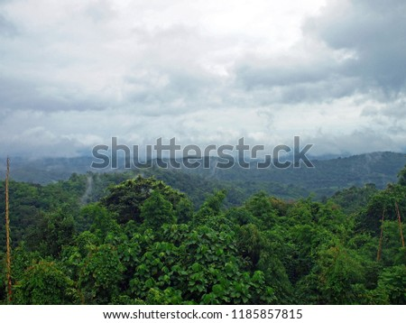 Tropical Forest with a mountain range at Na Yung forest and Num Chom forest, Udornthani, Thailand #1185857815