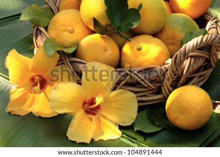 Tropical fruit basket with tropical flowers/yellow hibiscus