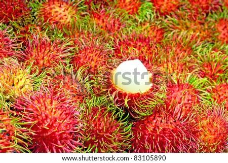 Tropical Fruit,Rambutan. - stock photo