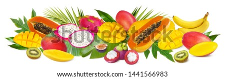 Tropical fruits background. Green palm leaves and tropical fruits isolated on a white background with clipping path #1441566983
