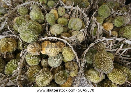 Tropical fruits, durians, in baskets.