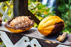 Tropical fruits near Concord Falls on the Island Of Grenada. Grenada is a country and an island located in the southern part of the Lesser Antilles, West Indies