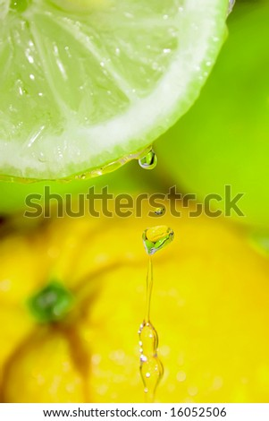 Tropical fruits with flowing water.Mixed light.