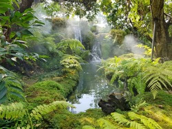 Tropical gardens typically resemble jungles with plenty of lush foliage filling every nook and cranny. Garden design concept.