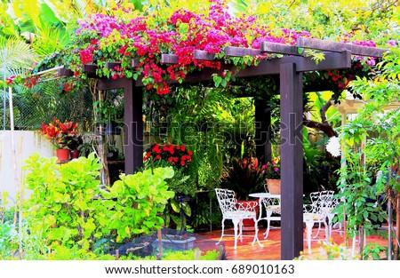Tropical gazebo. Hi Res. Garden Trellis (Gazebo) with lush greenery and colorful flowers around on Southern Brazil.
