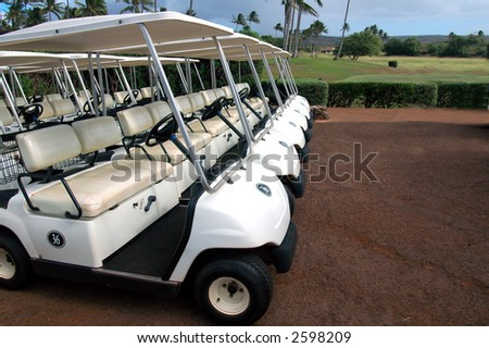 Tropical Golf Carts 3