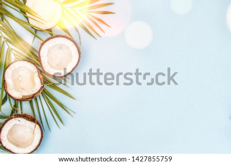 Tropical green leaves palm fronds and coconuts #1427855759