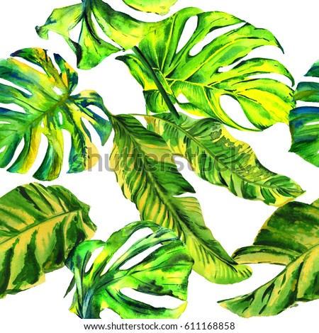 Tropical Hawaii leaves palm tree pattern in a watercolor style isolated. Aquarelle wild flower for background, texture, wrapper pattern, frame or border. #611168858