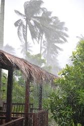 tropical hurricane ,bamboo house